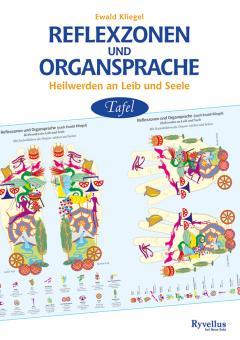 Tafel Reflexzonen und Organsprache