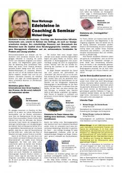 Beratungssteine-TrainerJournal